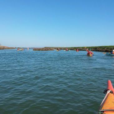 Canoa- Kayak: a Porto Caleri ed Albarella