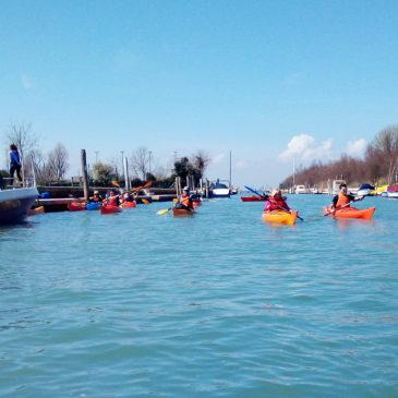 Canoa-kayak: Escursione a Murano e Certosa