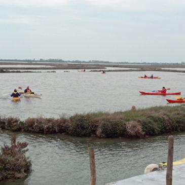 Canoa-kayak: Escursione da Lio Maggiore a Treporti